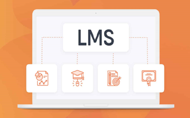 Most Effective Modules of LMS for a New Comer